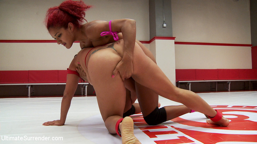 daisy ducati ultimate surrender